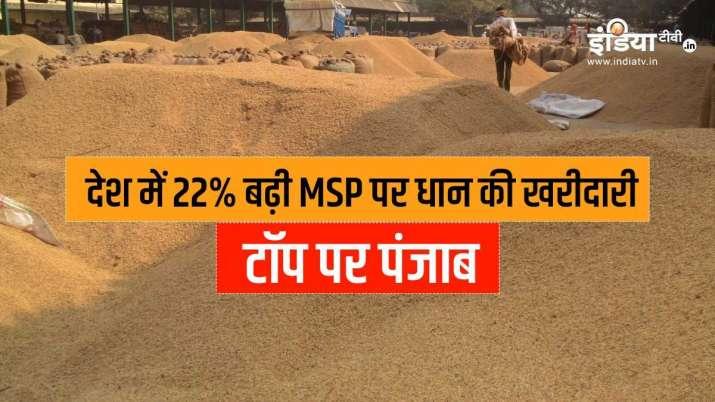 सरकार ने MSP पर अब तक की...- India TV Paisa