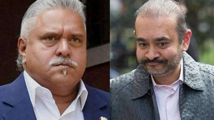 Nirav Modi's brother Nehal charged with committing 2.6 million dollar fraud in New York- India TV Paisa