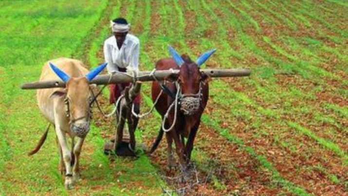 खेती के जानकारों के...- India TV Paisa