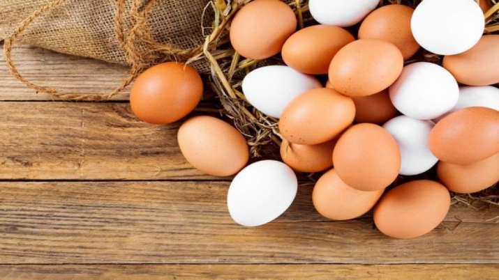 iit delhi invented vegetarian eggs- India TV Paisa