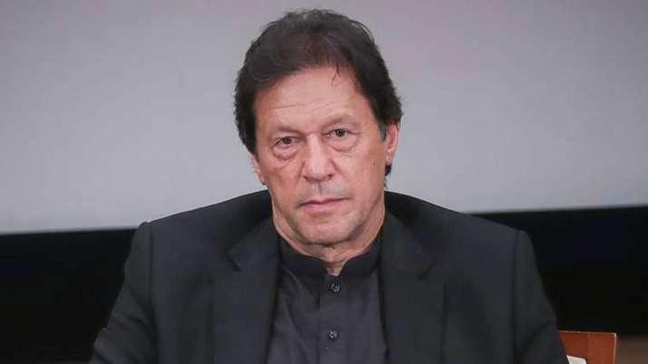 पाकिस्तान को कपास की बहुत ज्यादा जरुरत, इमरान खान भारत से फिर आयात को दे सकते हैं मंजूरी- India TV Paisa