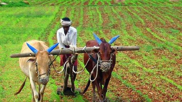 खुशखबरी! यहां सरकार ने 1.13 लाख किसानों का कर्ज माफ किया- India TV Paisa