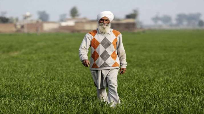 Modi Govt approves Rs 10,900 cr PLI scheme for food processing sector- India TV Paisa