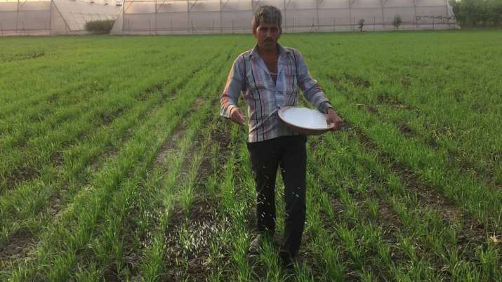 IFFCO not to hike prices of non-urea fertilisers in March- India TV Paisa