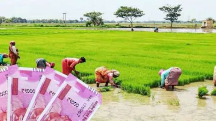 Kisan Credit Card को लेकर उत्तर प्रदेश से आई बड़ी खबर, योगी आदित्यनाथ ने अधिकारियों को दिए आदेश- India TV Paisa