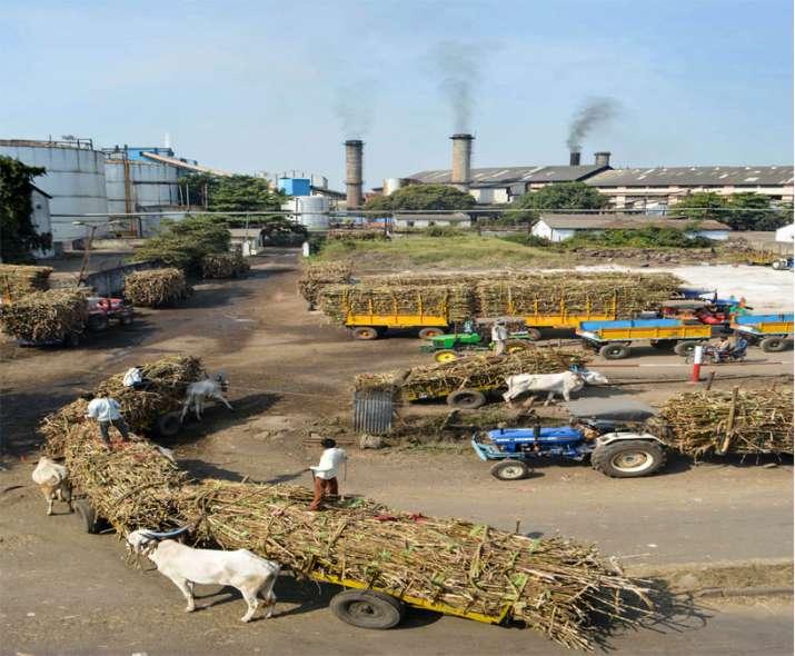 चीनी उत्पादन का...- India TV Paisa