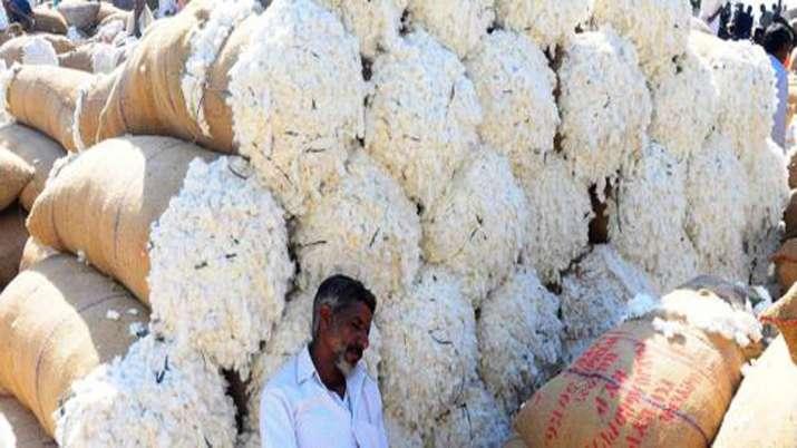 भारत का कॉटन निर्यात 30 सितंबर तक 60 लाख गांठ तक होने की उम्मीद- India TV Paisa