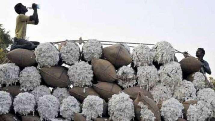 कॉटन का रकबा बढ़ने का...- India TV Paisa