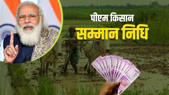 पीएम किसान सम्मान...- India TV Paisa
