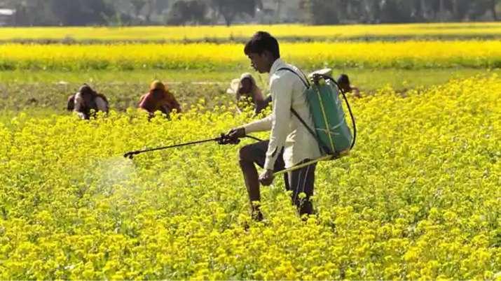कृषि क्षेत्र पर नहीं...- India TV Paisa