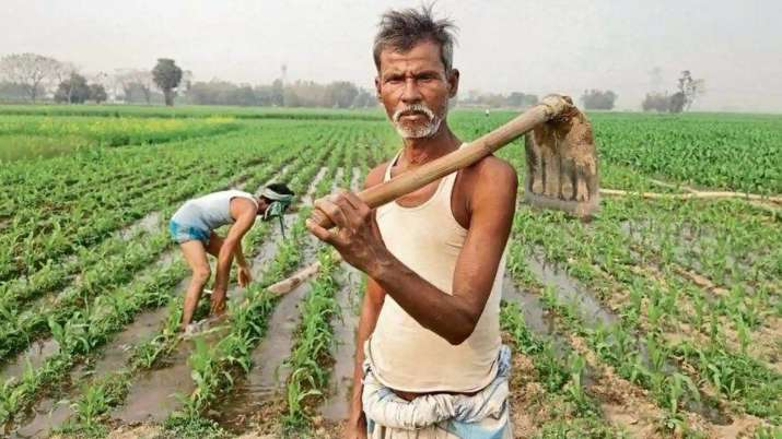 rajasthan government approved cm kisan mitra scheme for farmers - India TV Paisa
