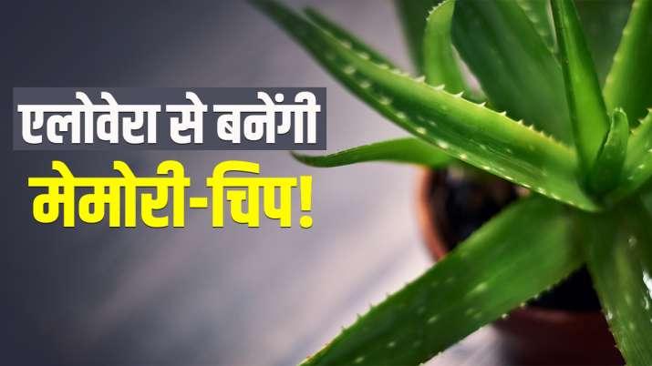 मेमोरी-चिप बनाने में...- India TV Paisa