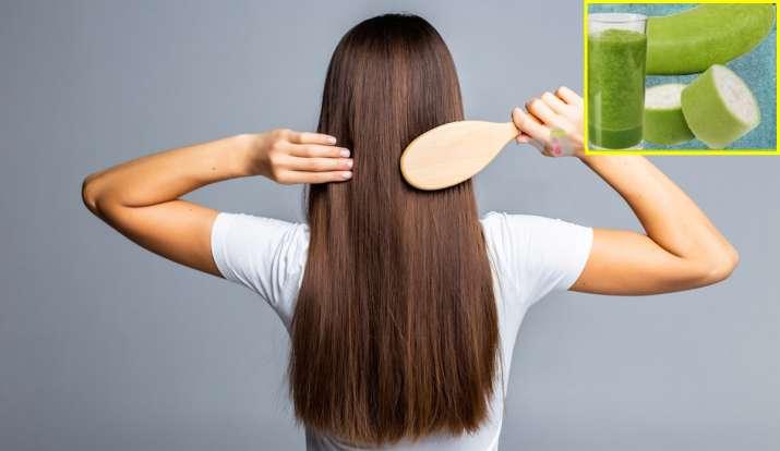 Lauki for hair know how to use bottle gourd peel and juice to get rid hair fall bald and white hair:झड़ते बालों से हैं परेशान तो ऐसे करें लौकी के जूस का इस्तेमाल, गंजेपन से भी मिलेगी निजात