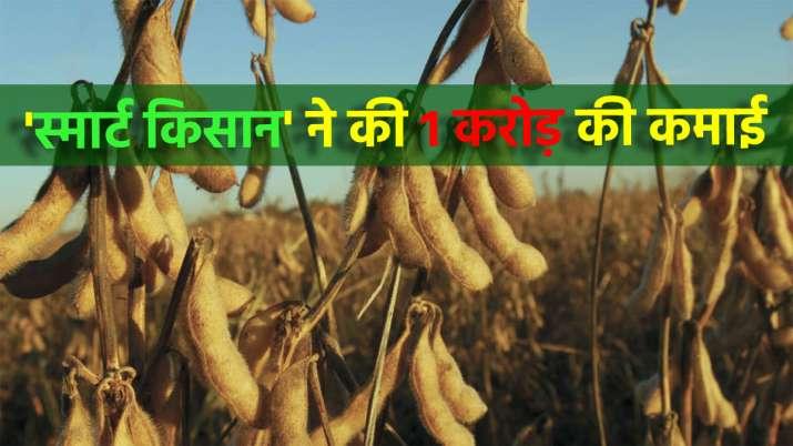 सूखाग्रस्त क्षेत्र...- India TV Paisa