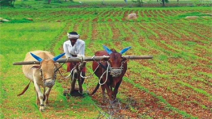 किसानों का कर्ज माफ करने का कोई प्रस्ताव विचाराधीन नहीं: सरकार- India TV Paisa