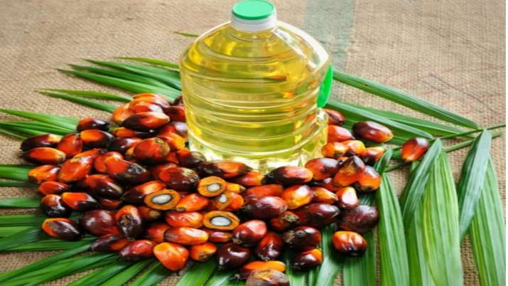 India's July palm oil imports dip over 43 pc to 4.65 lakh tonne- India TV Paisa