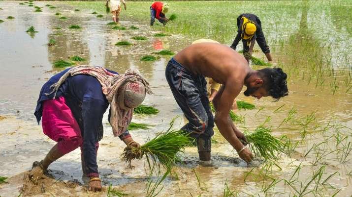 परेशान किसानों के...- India TV Paisa