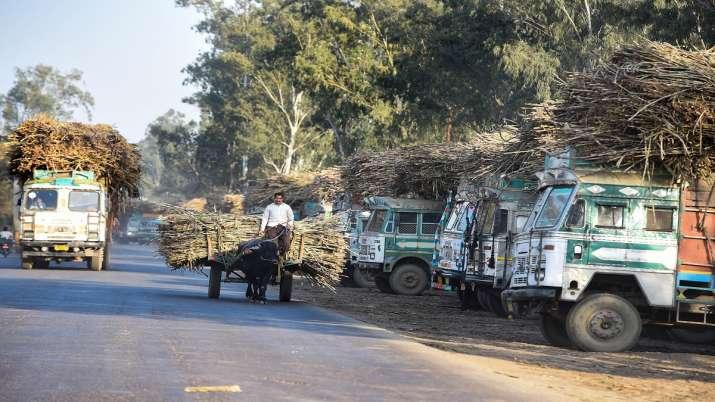11 महीने में 11 लाख टन...- India TV Paisa