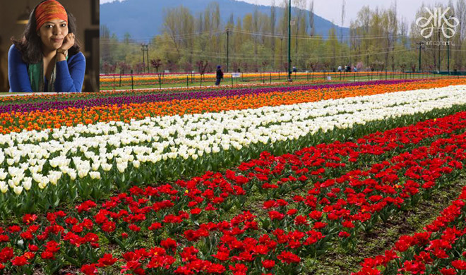 tulip garden- India TV Hindi