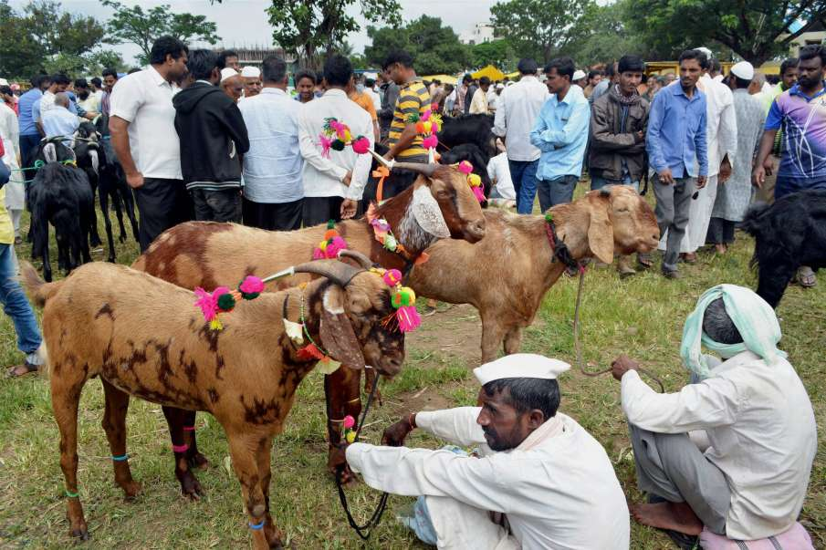 Maharashtra: Public gatherings banned in Bhiwandi, Palghar on Bakrid- India TV Hindi