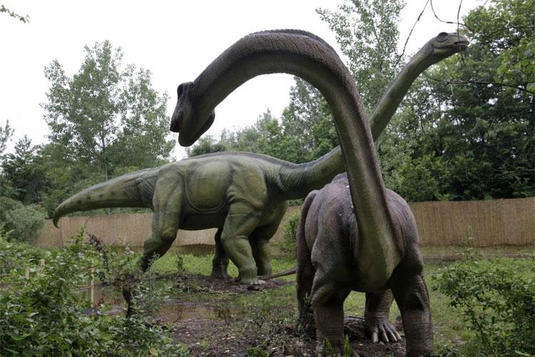 125 million-year-old dandruff reveals how dinosaurs shed skin | AP- India TV Hindi