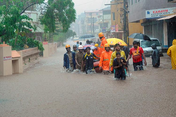 Karnataka: Heavy rains inundate Mangalore, shark and snake seen floating on roads- India TV Hindi