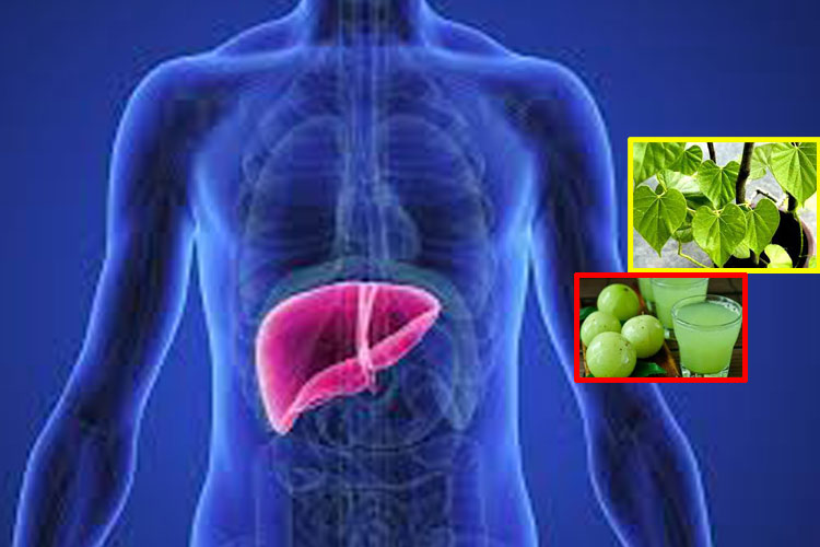 these home remedies will keep your liver healthy in hindi- India TV Hindi