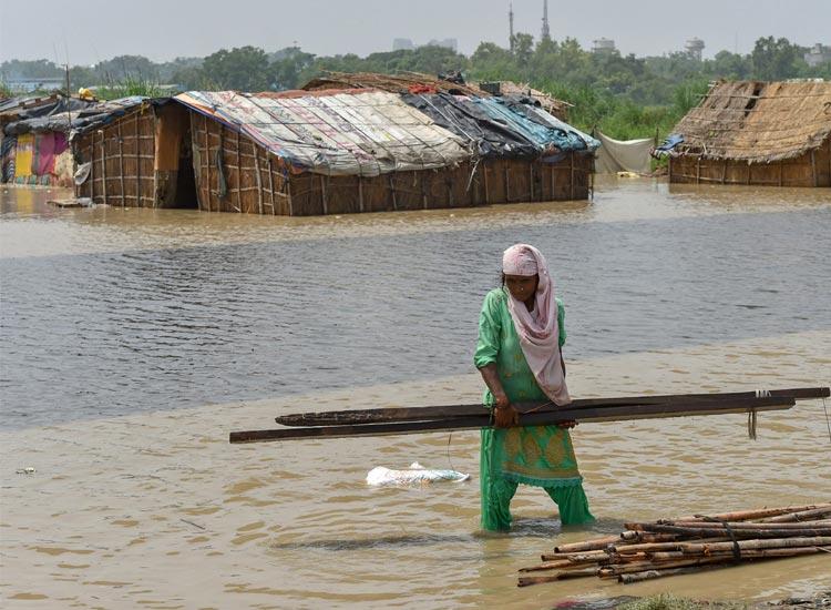हरियाणा, यमुना, बाढ़- India TV Hindi