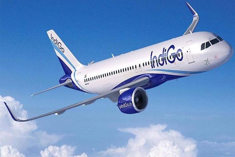 Mid-air collision between two IndiGo aircraft averted over Bengaluru |PTI Representational- India TV Hindi