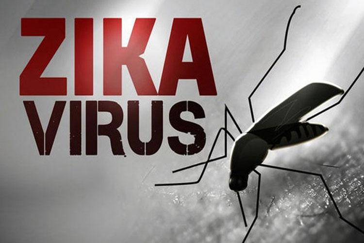Zika Virus- India TV Hindi