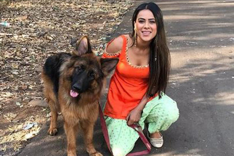 Nia Sharma- India TV Hindi