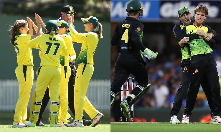 Australia Women's and Men's cricket team- India TV Hindi