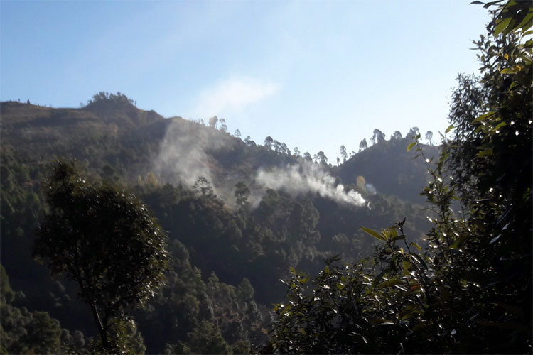Pakistan army violates ceasefire in Nowshera secto- India TV Hindi