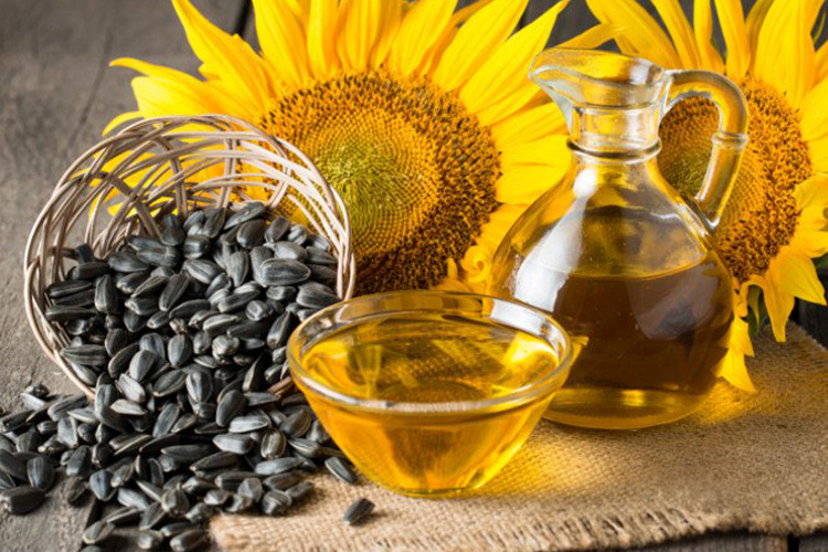 Health benefits of Sunflower oil- India TV Hindi