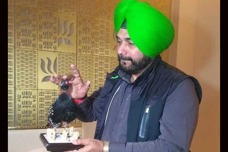 Navjot Singh Sidhu- India TV Hindi