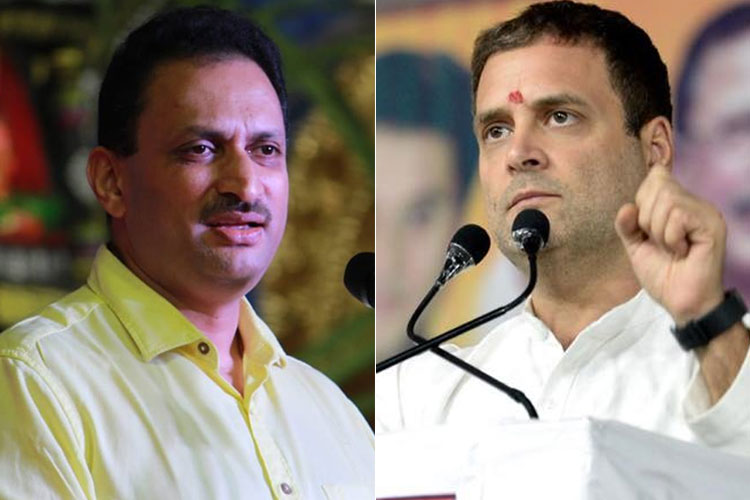 After 'Hindu Girl' remark, Anant Kumar Hegde calls Rahul Gandhi a 'hybrid' | Facebook- India TV Hindi