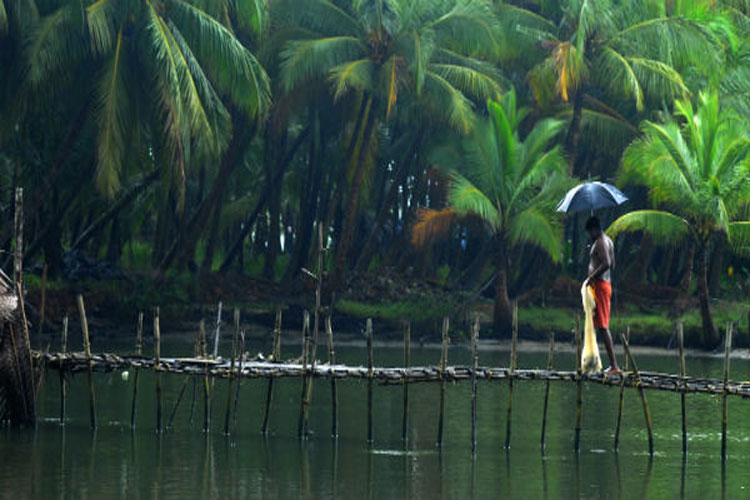 IMD forecasts normal rain during Monsoon Season 2019 in its first estimate - India TV Hindi