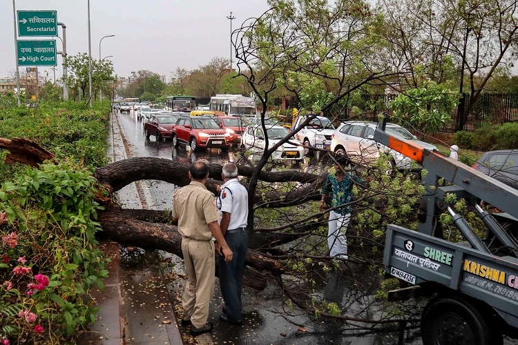 Police personnel look on as people remove a fallen tree...- India TV Hindi