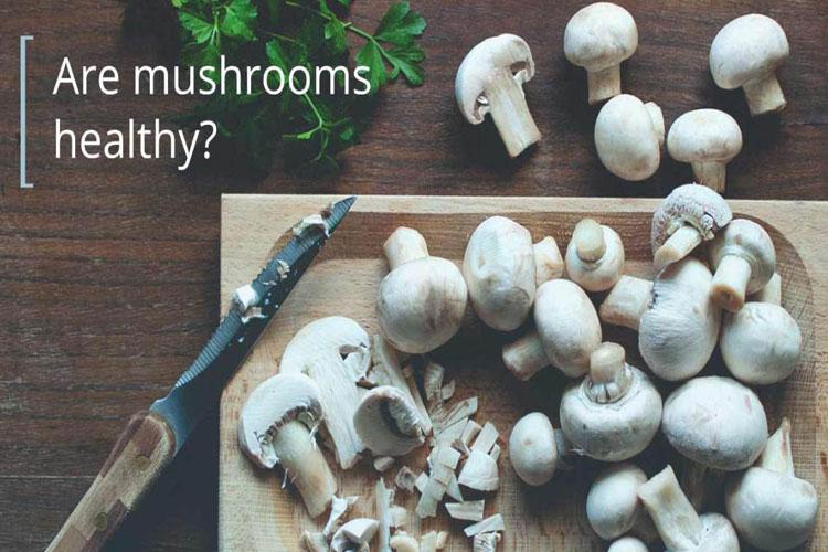 Mushroom- India TV Hindi