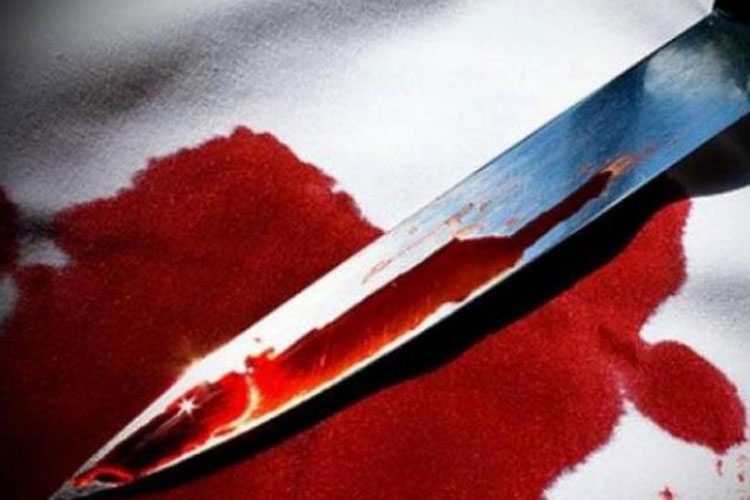 Man kills mother in northwest Delhi, surrenders before police | PTI Representational - India TV Hindi