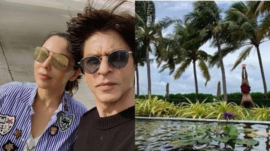 शाहरुख खान- India TV Hindi