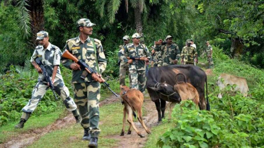 16 Bangladeshis held in BSF raids in West Bengal- India TV Hindi