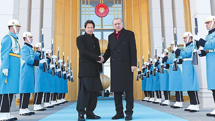 Pakistan 'fully supports' Turkish efforts in Syria, says Imran Khan | AP File- India TV Hindi