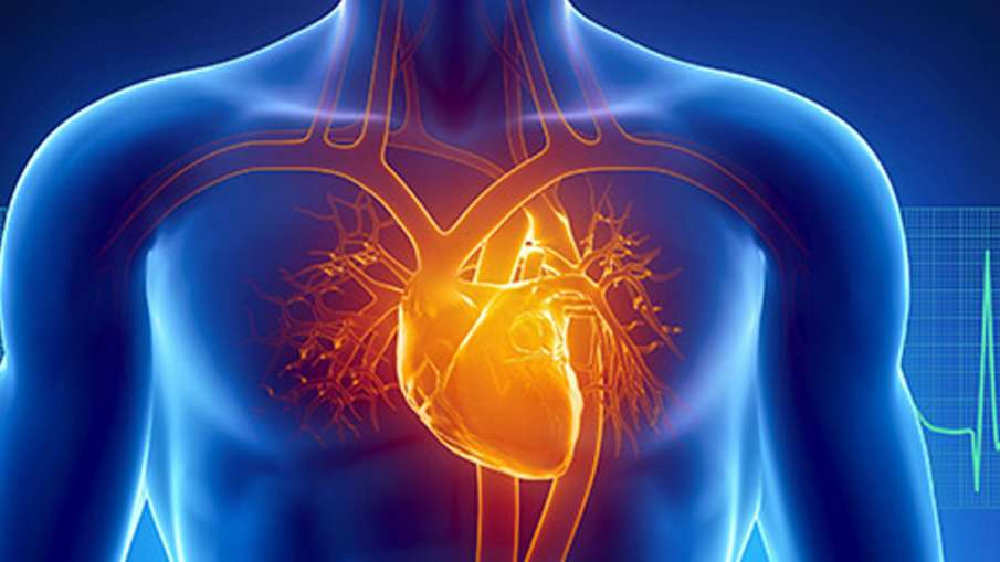 दिल कीबीमारी- India TV Hindi