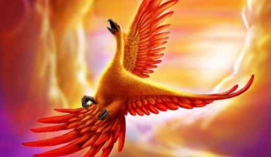 phoenix bird- India TV Hindi