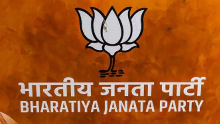 BJP holds meetings to review party's debacle in Delhi Assembly polls- India TV Hindi