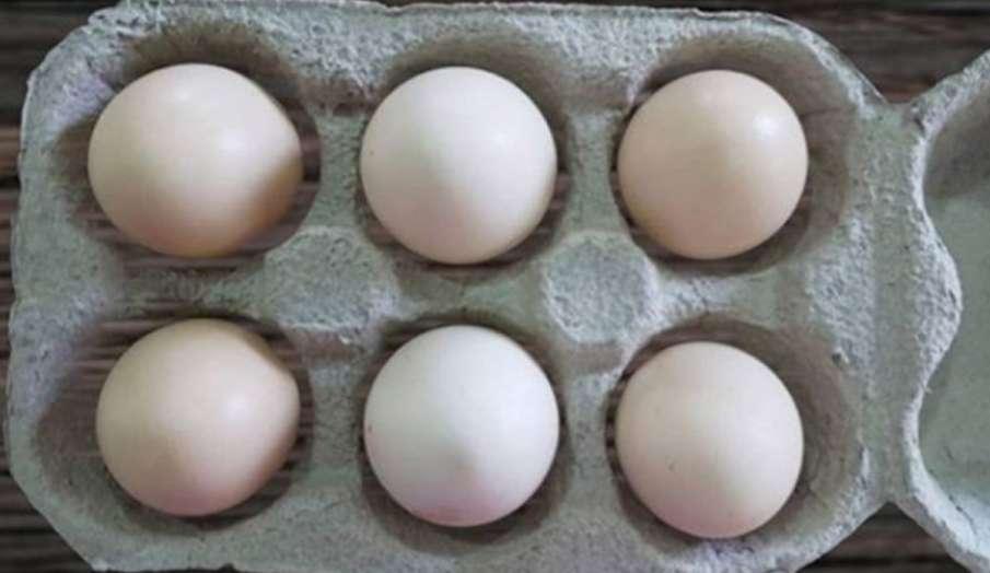 फ्रिज में अंडा रखना हो सकता है सेहत के लिए खतरनाक, egg- India TV Hindi