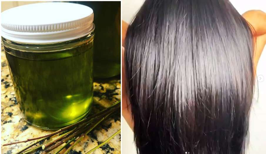How to White hair will turn black in a few days: Beauty tips home remedy for white hair hair oil for- India TV Hindi