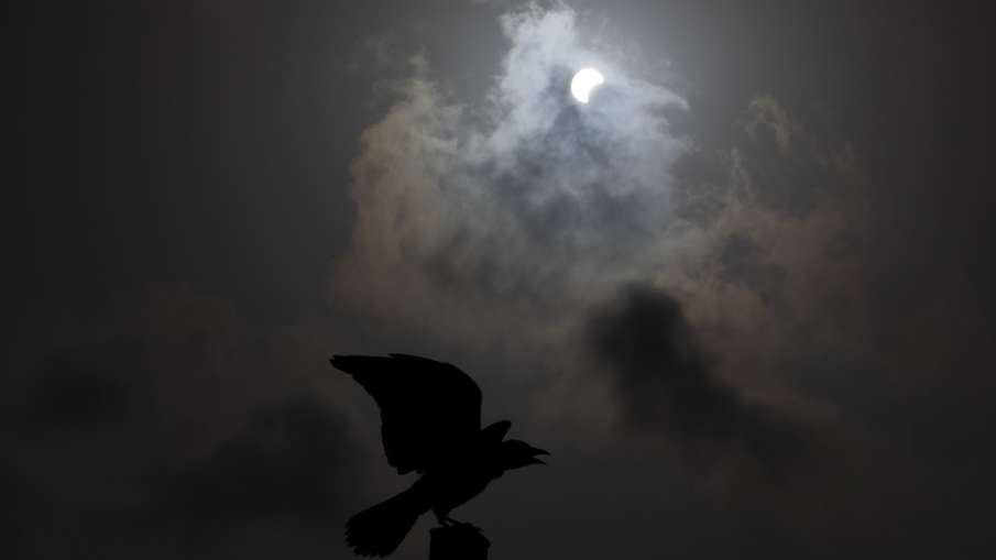 A crow is silhouetted against a partial solar eclipse in Hefer Valley, Israel.- India TV Hindi