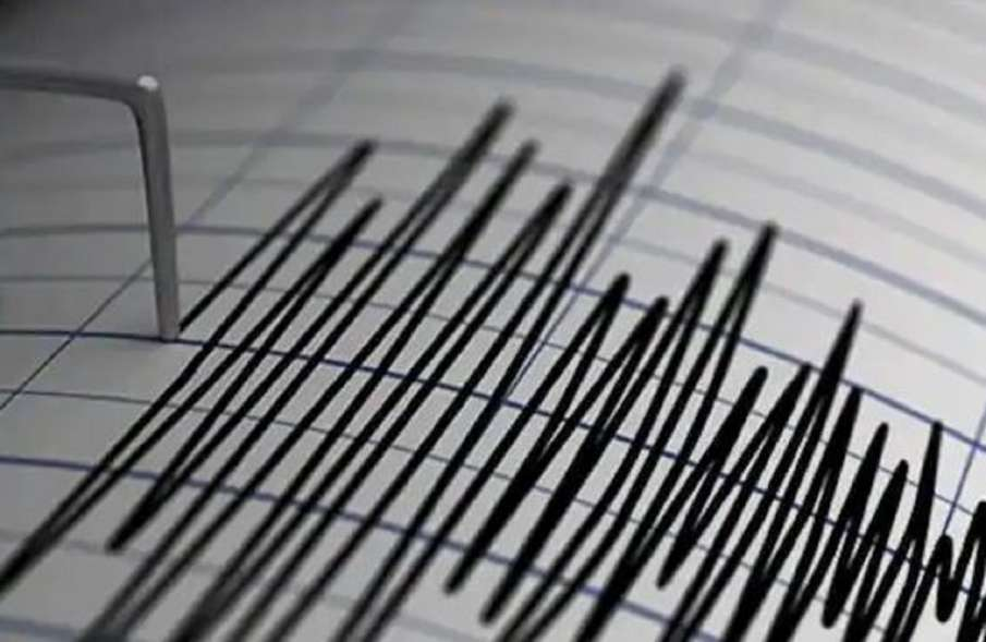 Delhi government launches awareness campaign on earthquakes- India TV Hindi
